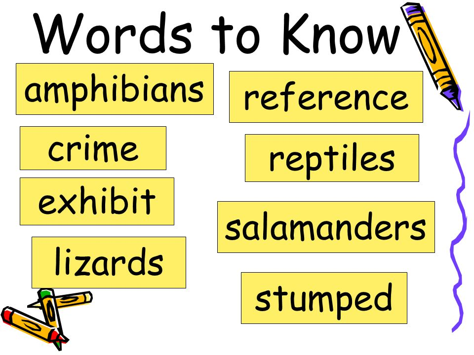 Words to Know amphibians crime exhibit lizards reference reptiles salamanders stumped