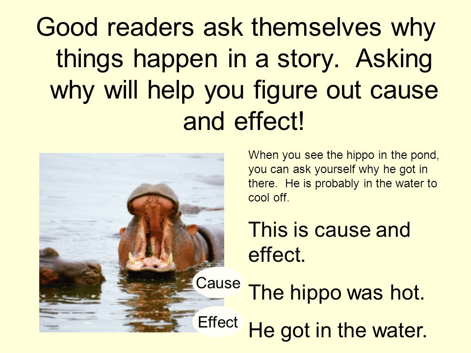 Good readers ask themselves why things happen in a story. Asking why will help you figure out cause and effect! When you see the hippo in the pond, yo