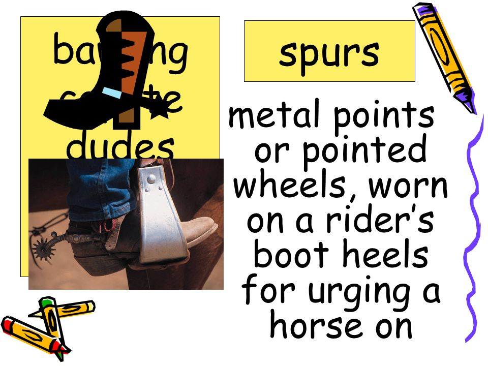 metal points or pointed wheels, worn on a riders boot heels for urging a horse on spurs bawling coyote dudes roundup spurs