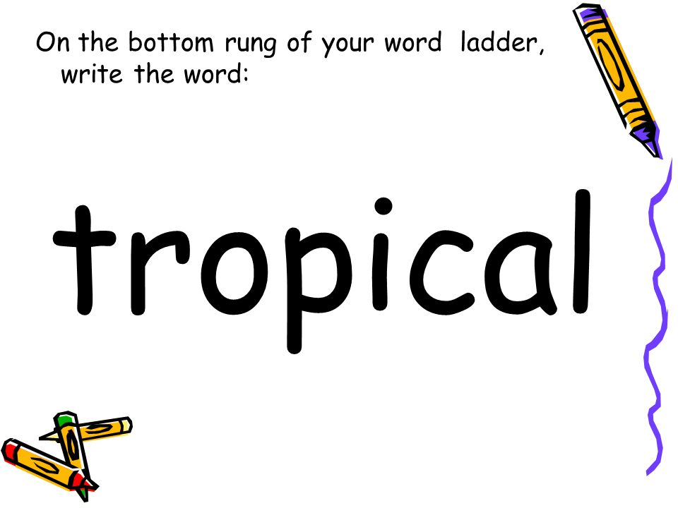 On the bottom rung of your word ladder, write the word: tropical
