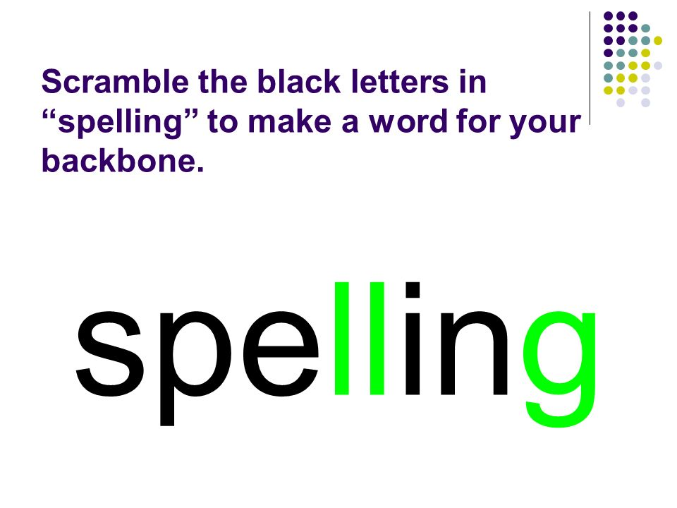 spelling You should have spelled…