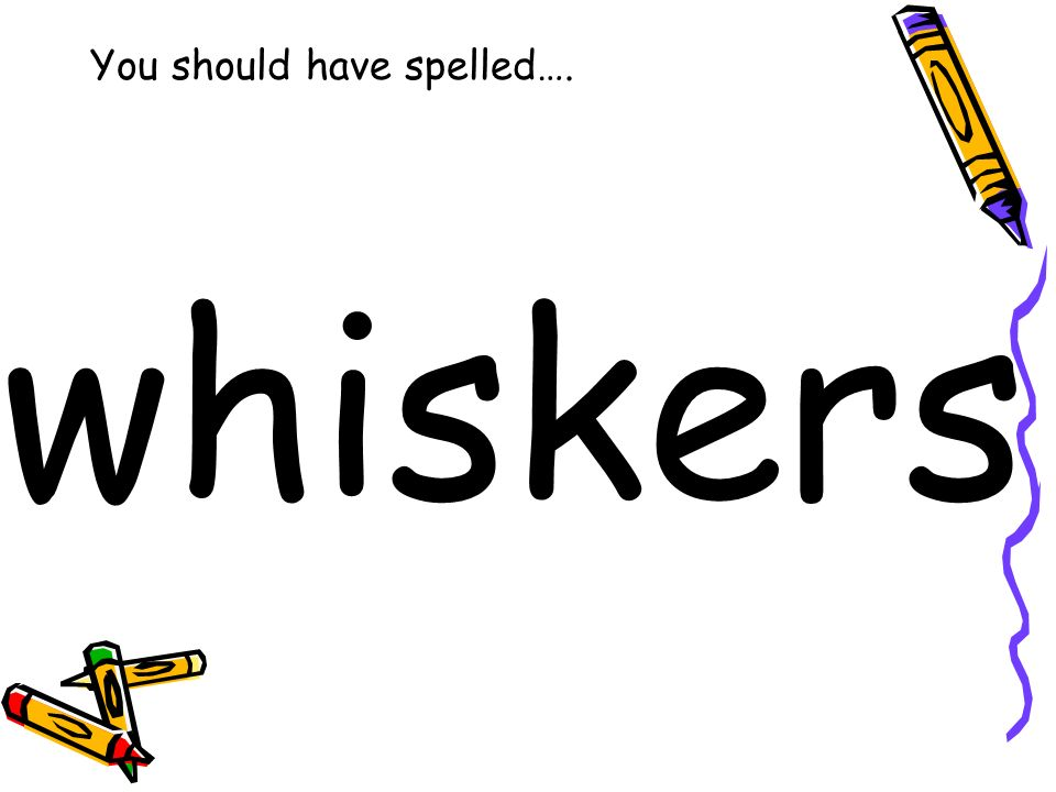You should have spelled…. whiskers
