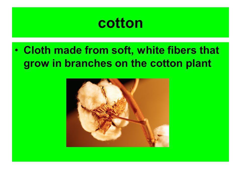 Vocabulary Cotton Festival Graceful Handkerchief Paces Pale Rhythm Snug