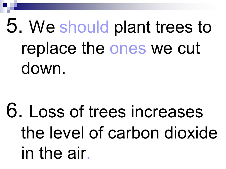 5. We should plant trees to replace the ones we cut down. 6. Loss of trees increases the level of carbon dioxide in the air.