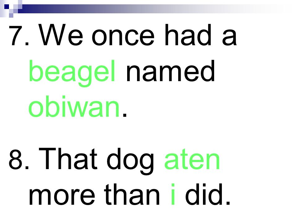 7. We once had a beagel named obiwan. 8. That dog aten more than i did.