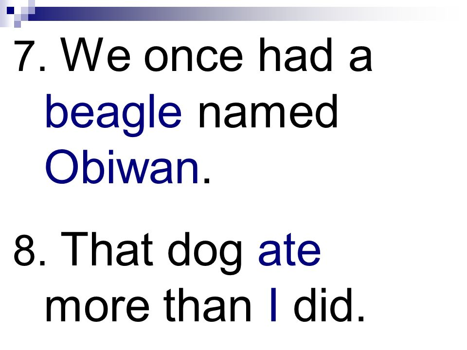 7. We once had a beagle named Obiwan. 8. That dog ate more than I did.