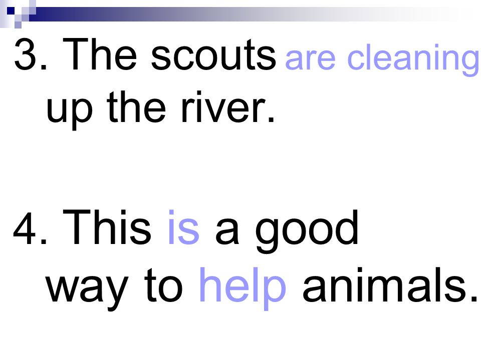 3. The scouts are cleaning up the river. 4. This is a good way to help animals.