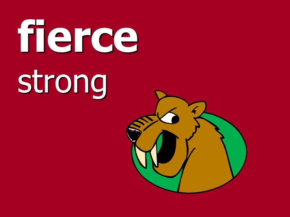 fierce strong