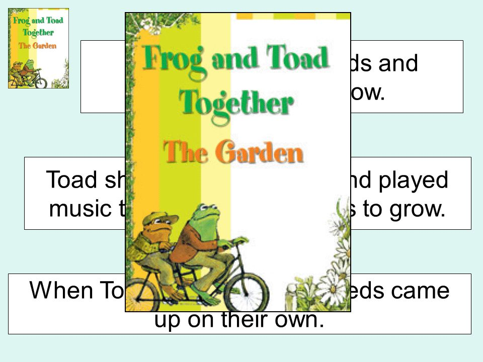 Beginning Middle End Toad planted his seeds and wanted them to grow. Toad shouted, read, sang, and played music trying to get the seeds to grow. When