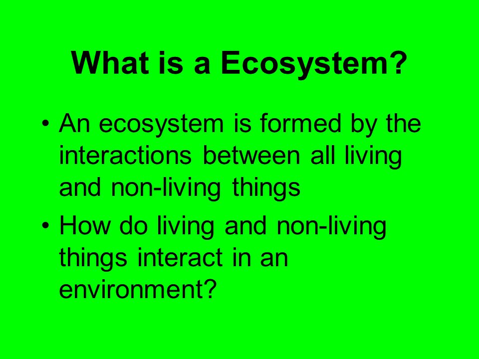 What is a Ecosystem? An ecosystem is formed by the interactions between all living and non-living things How do living and non-living things interact