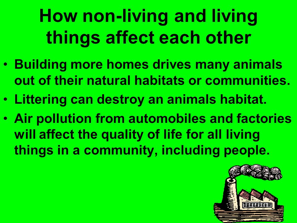How non-living and living things affect each other Building more homes drives many animals out of their natural habitats or communities. Littering can