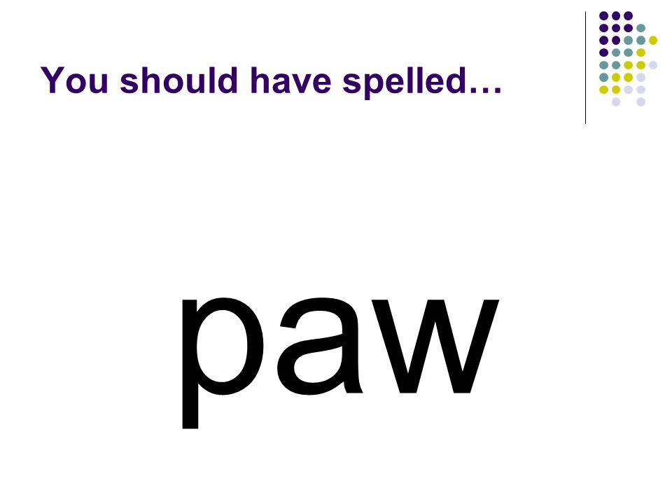 jaw Change the first letter in jaw to make a word for a dogs foot.