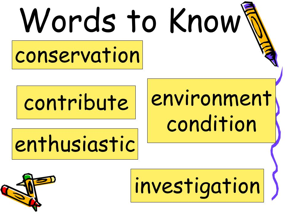 Jane Goodalls 10 Ways to Help Save Wildlife Fifth Grade Unit 2 Week 4