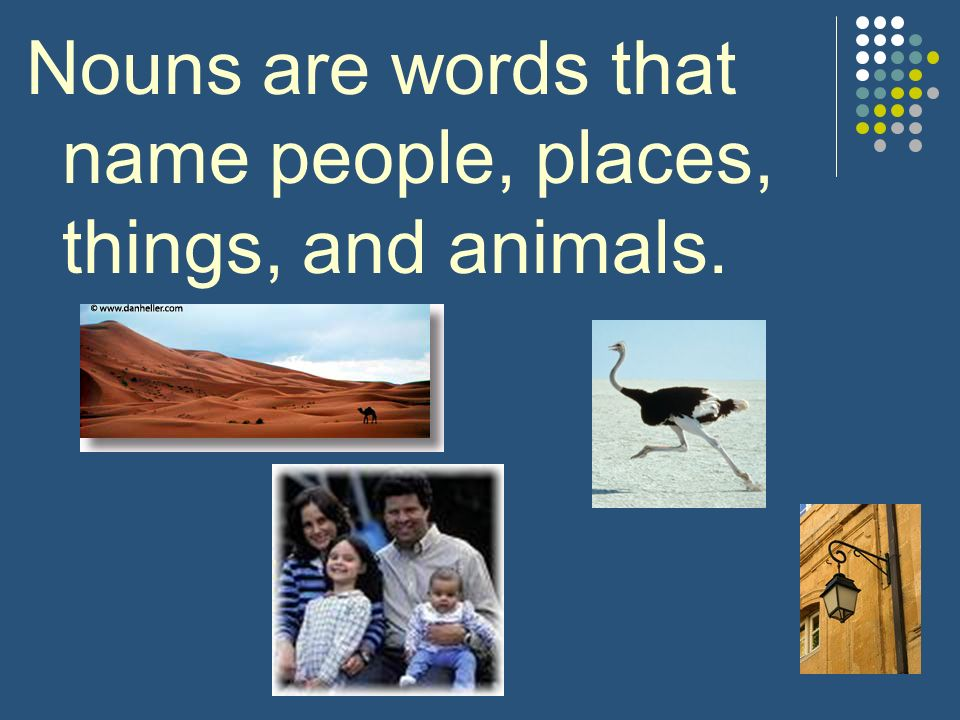 Nouns are words that name people, places, things, and animals.