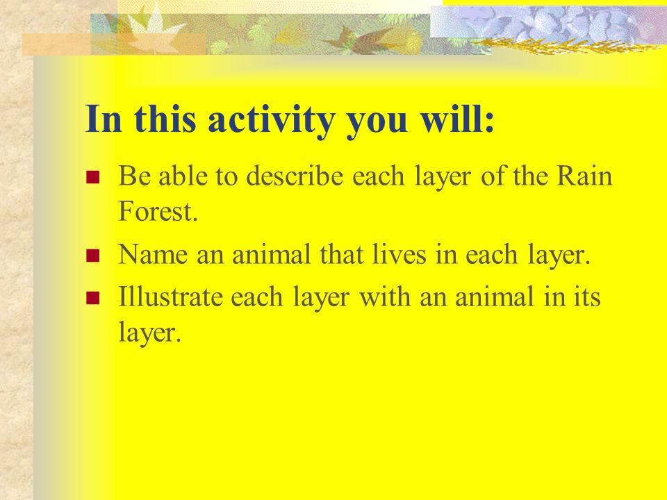 In this activity you will: Be able to describe each layer of the Rain Forest.
