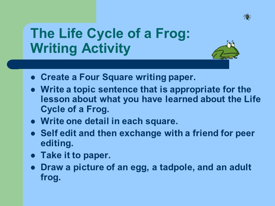 The Life Cycle of a Frog: Writing Activity Create a Four Square writing paper. Write a topic sentence that is appropriate for the lesson about what yo
