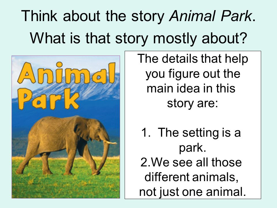 Think about the story Animal Park. What is that story mostly about? -zebras are fast runners -big hippos sit in mud -many animals live in the park The