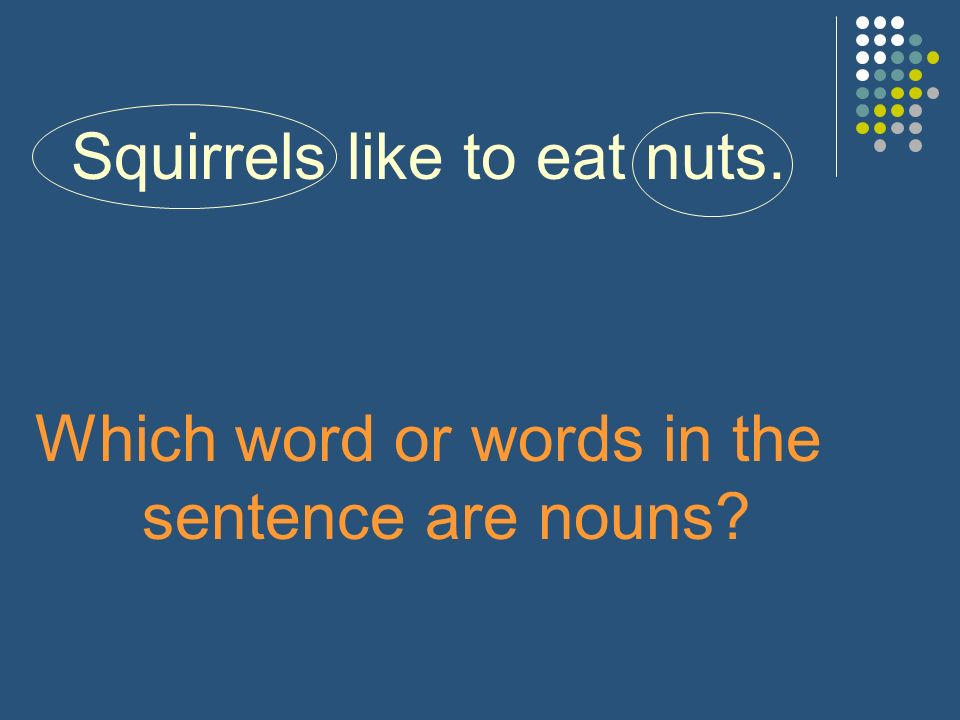 Squirrels like to eat nuts. Which word or words in the sentence are nouns