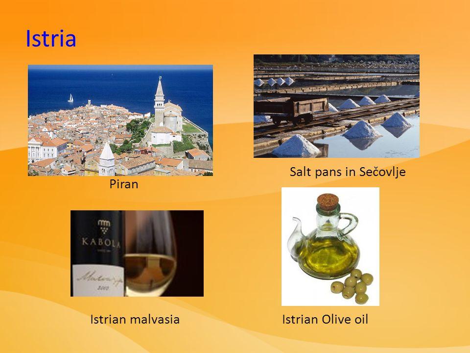 Salt pans in Sečovlje Istrian malvasiaIstrian Olive oil Istria Piran