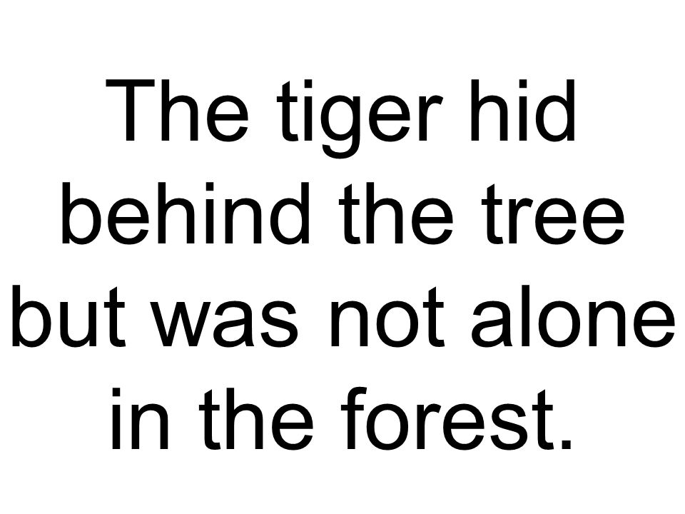 The tiger hid behind the tree but was not alone in the forest.