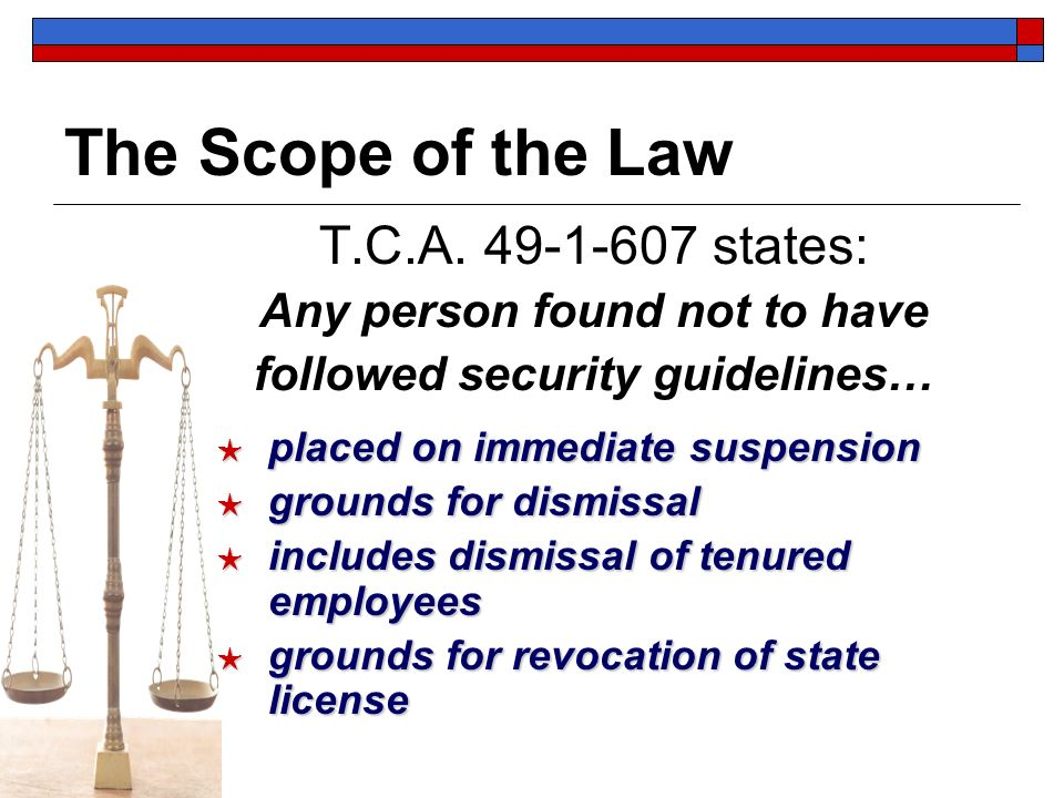 The Scope of the Law T.C.A. 49-1-607 states: Any person found not to have followed security guidelines… placed on immediate suspension placed on immed