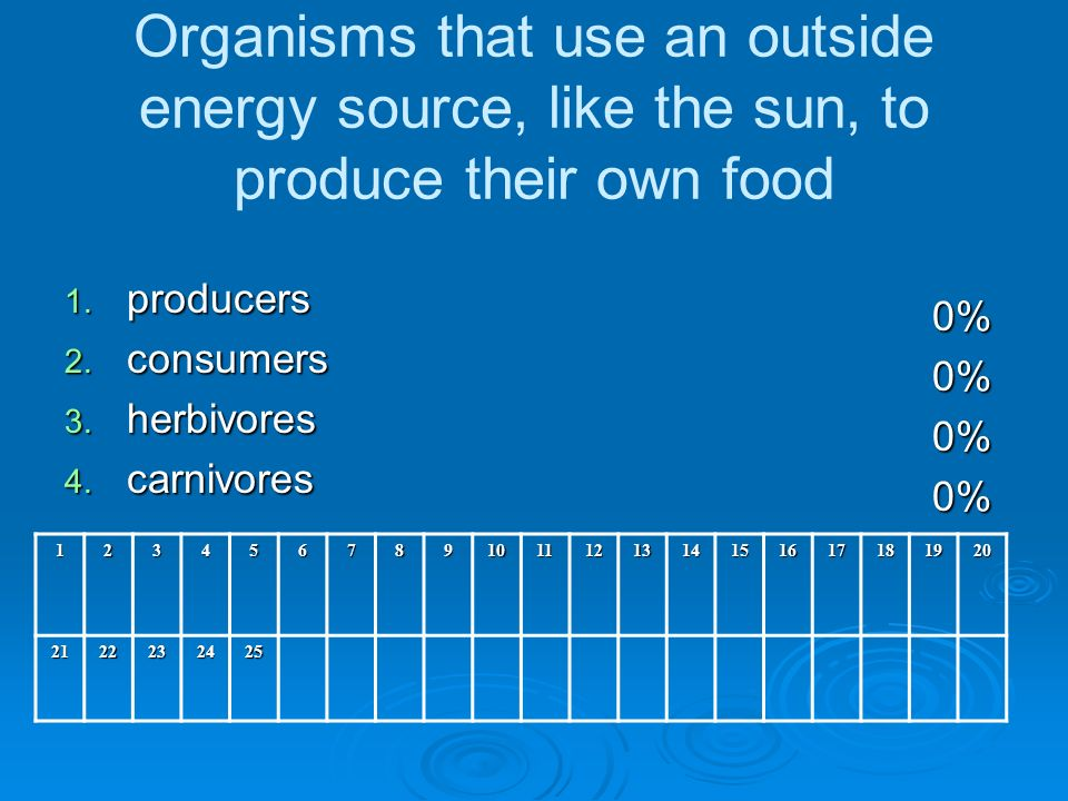 Organisms that use an outside energy source, like the sun, to produce their own food 1.