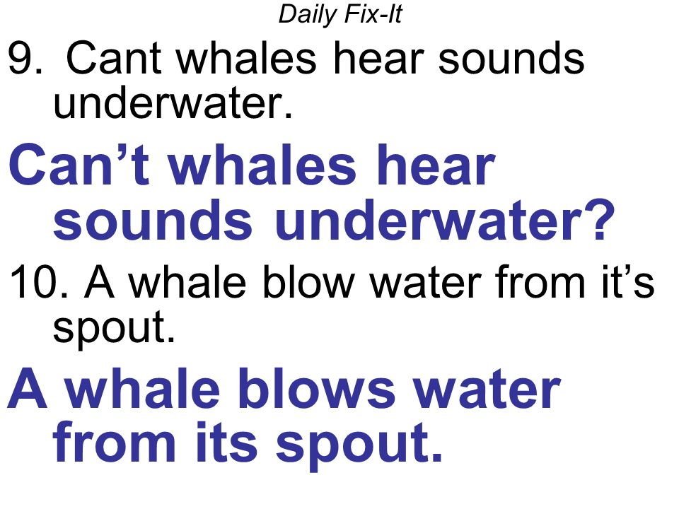 Daily Fix-It 9. Cant whales hear sounds underwater.