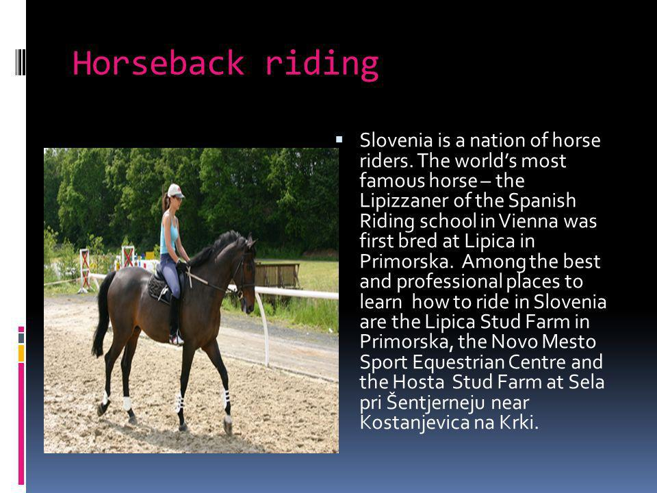 Horseback riding Slovenia is a nation of horse riders.