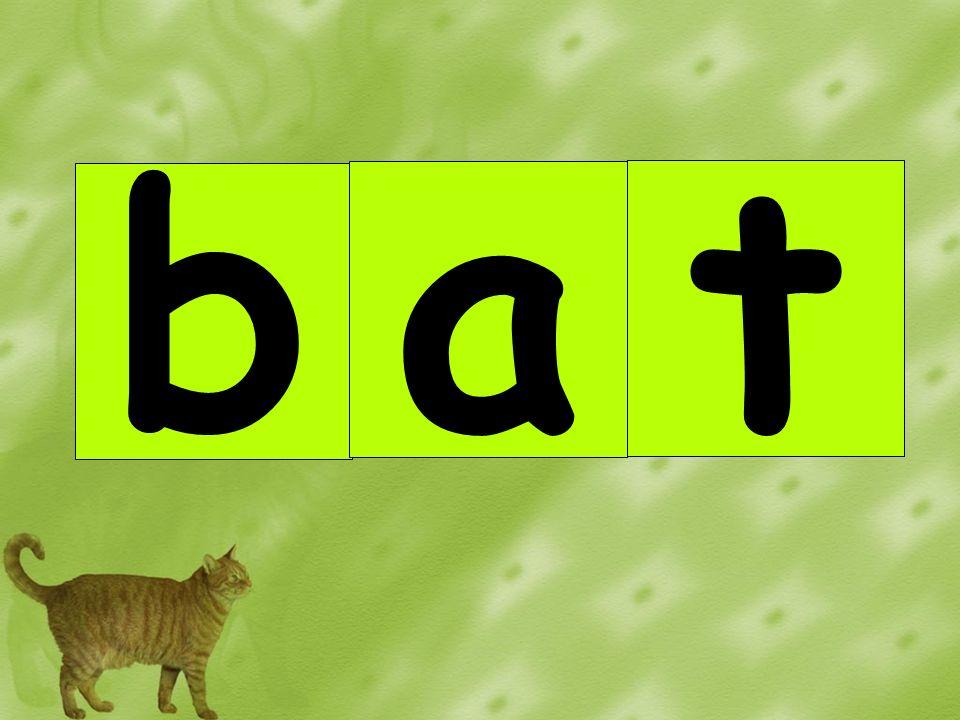 b a t