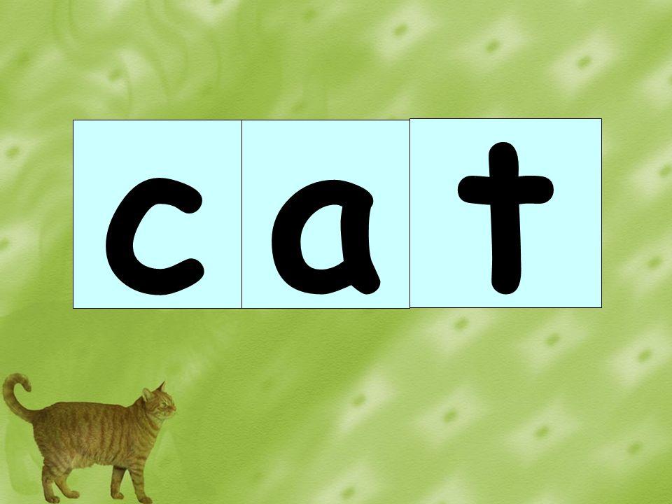 a t c
