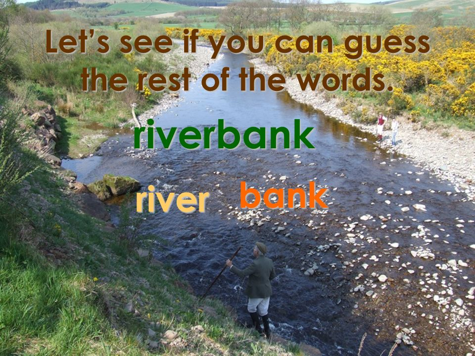 Lets see if you can guess the rest of the words. riverbank river bank