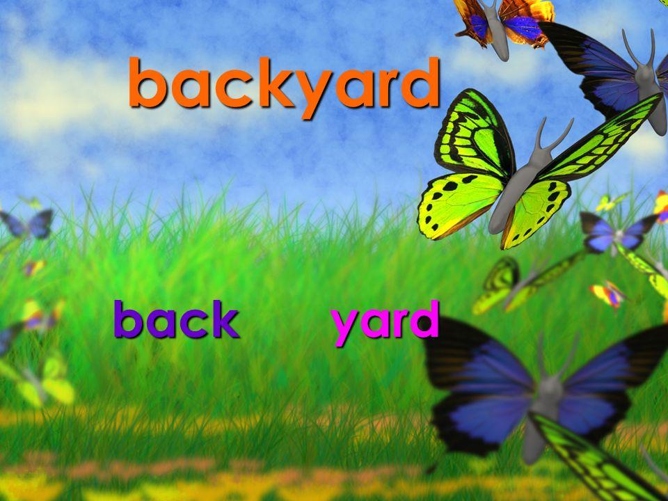 backyard backyard
