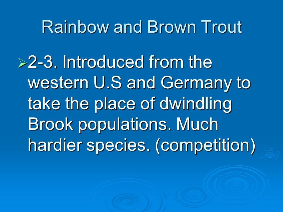 Rainbow and Brown Trout 2-3.