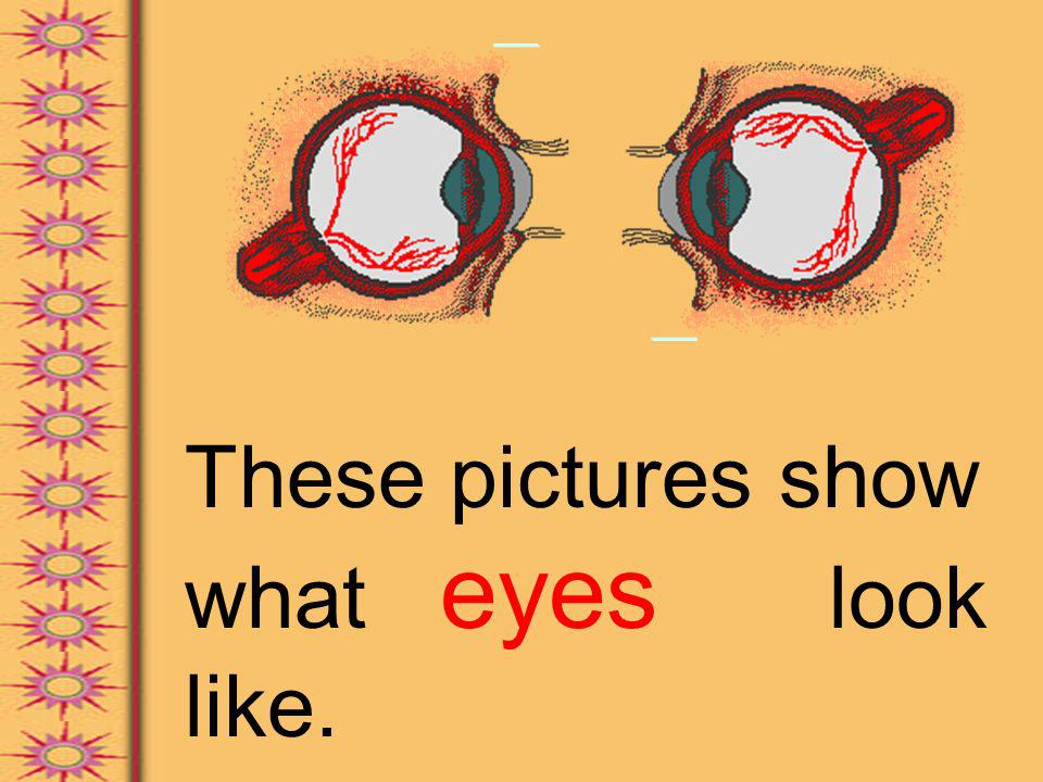 These pictures show what eyes look like.