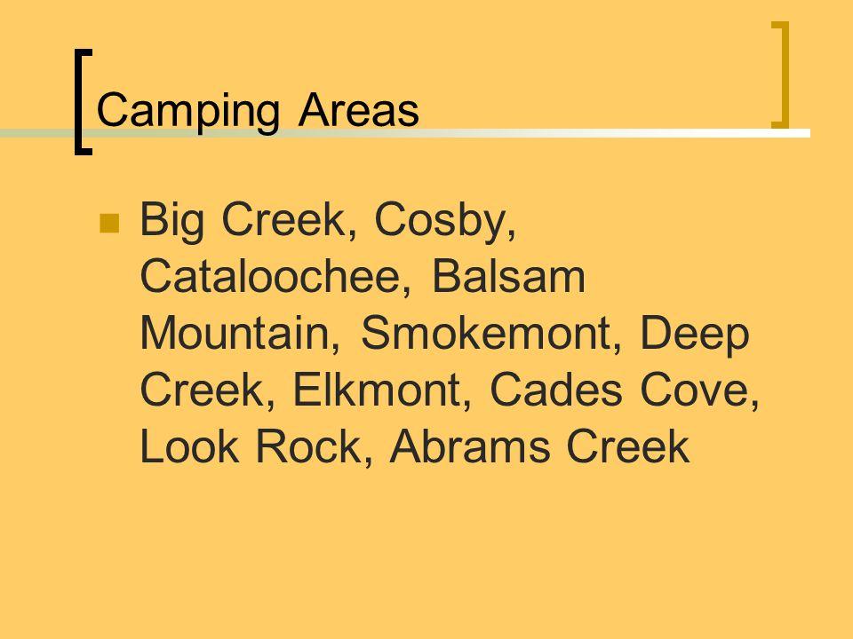 Camping Areas Big Creek, Cosby, Cataloochee, Balsam Mountain, Smokemont, Deep Creek, Elkmont, Cades Cove, Look Rock, Abrams Creek