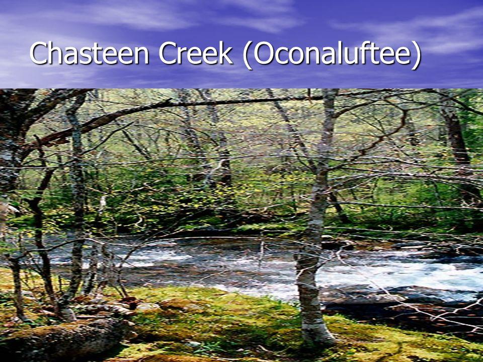 Chasteen Creek (Oconaluftee)