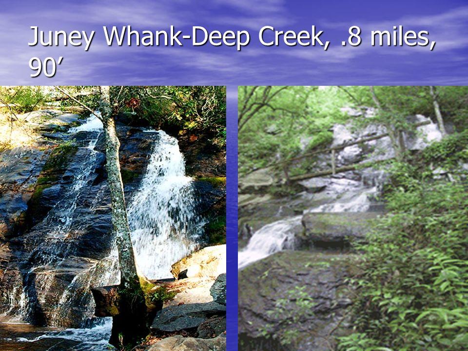 Juney Whank-Deep Creek,.8 miles, 90