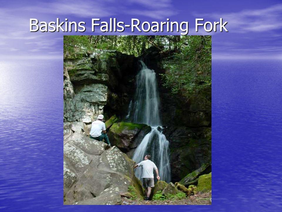Baskins Falls-Roaring Fork