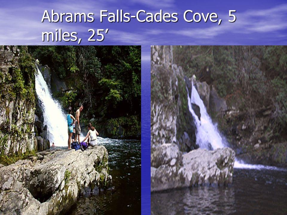 Abrams Falls-Cades Cove, 5 miles, 25