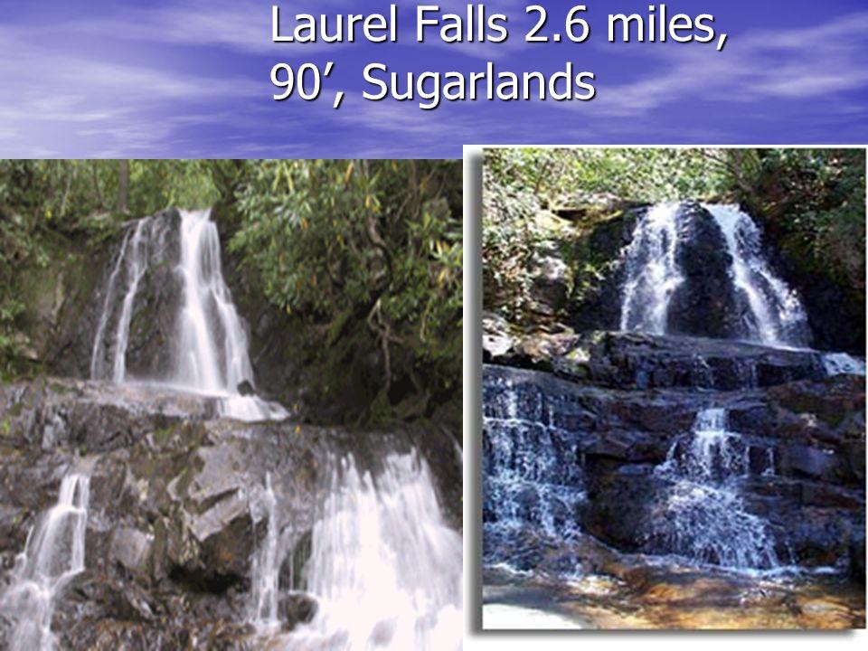Laurel Falls 2.6 miles, 90, Sugarlands