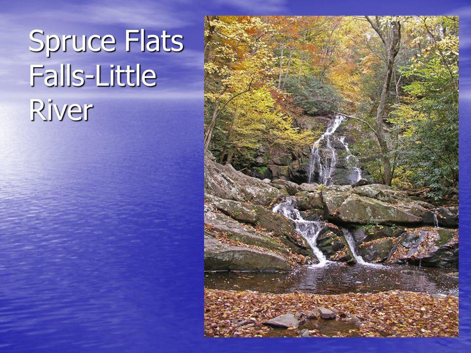 Spruce Flats Falls-Little River
