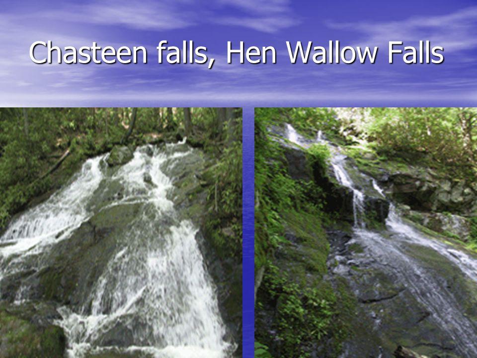 Chasteen falls, Hen Wallow Falls