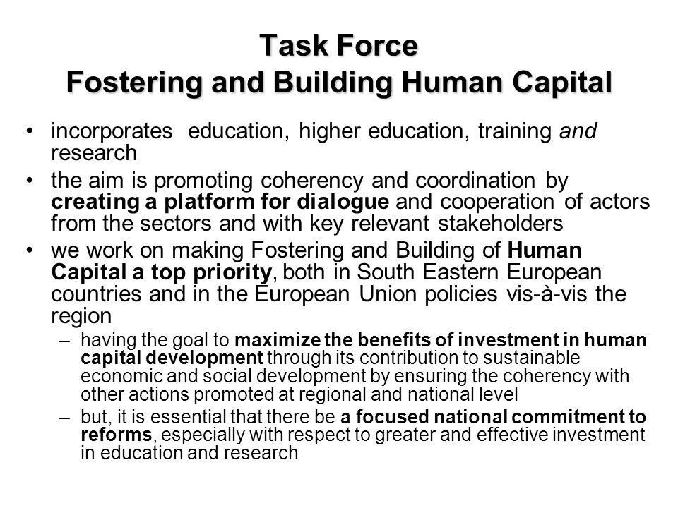 Task Force Fostering and Building Human Capital incorporates education, higher education, training and research the aim is promoting coherency and coo