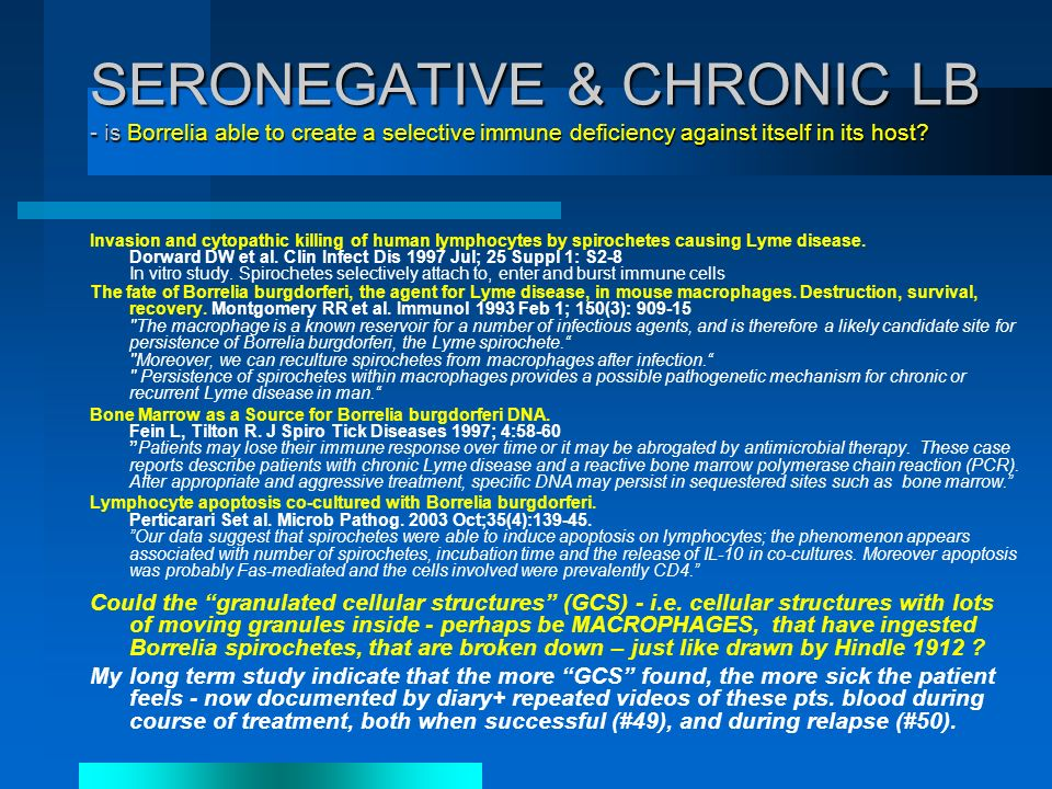 SERONEGATIVE & CHRONIC LB - is Borrelia able to create a selective immune deficiency against itself in its host.