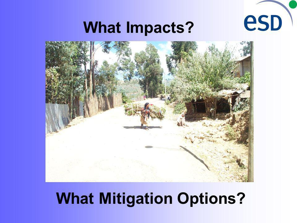 What Mitigation Options What Impacts