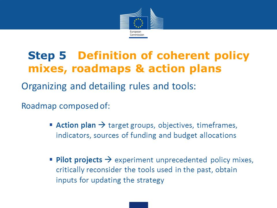 Step 5 Definition of coherent policy mixes, roadmaps & action plans Organizing and detailing rules and tools: Roadmap composed of: Action plan target