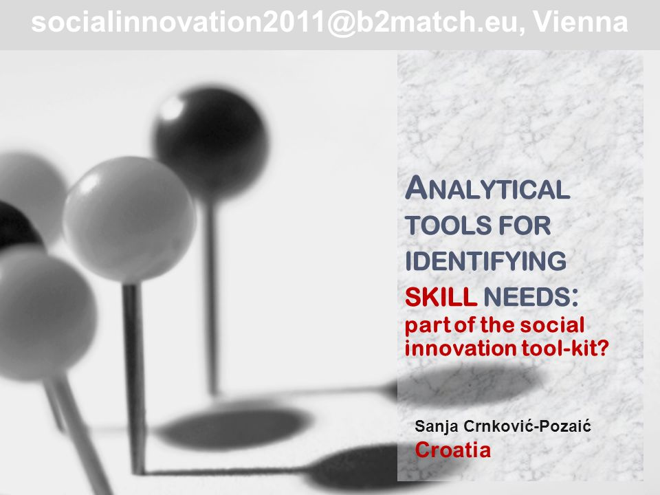 Themes today Working definition of social innovation Social innovation skills Metodology of identifying skill needs Possible uses in pursuit of social innovation 2