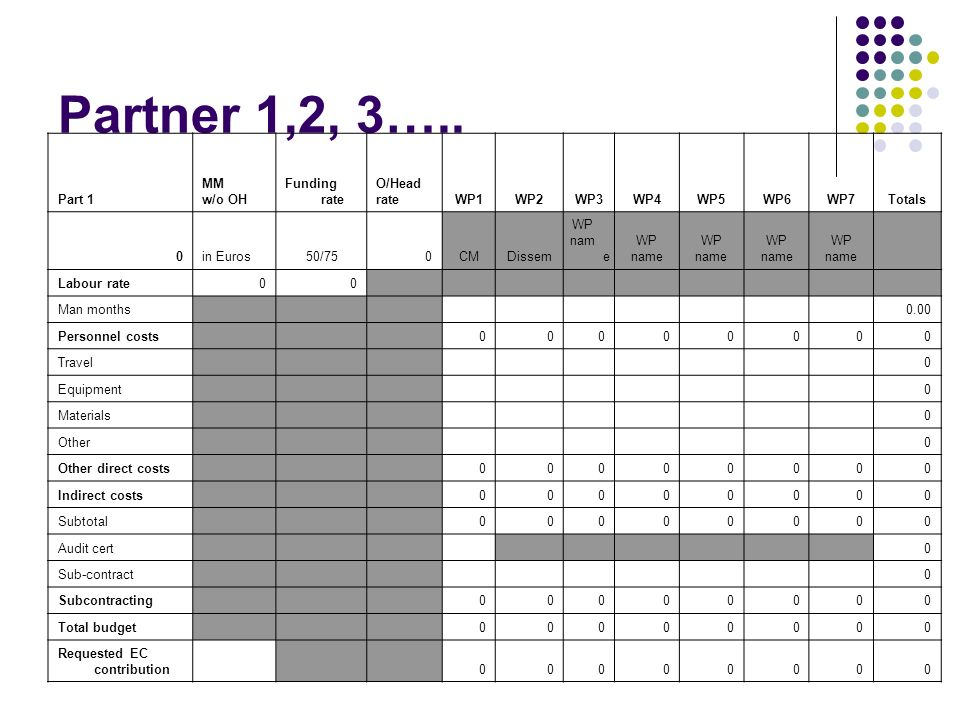 Partner 1,2, 3….. Part 1 MM w/o OH Funding rate O/Head rateWP1WP2WP3WP4WP5WP6WP7Totals 0in Euros50/750CMDissem WP nam e WP name WP name WP name WP nam