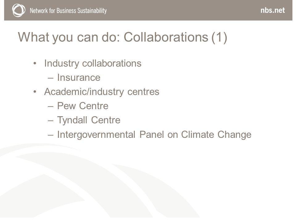 What you can do: Collaborations (1) Industry collaborations –Insurance Academic/industry centres –Pew Centre –Tyndall Centre –Intergovernmental Panel on Climate Change