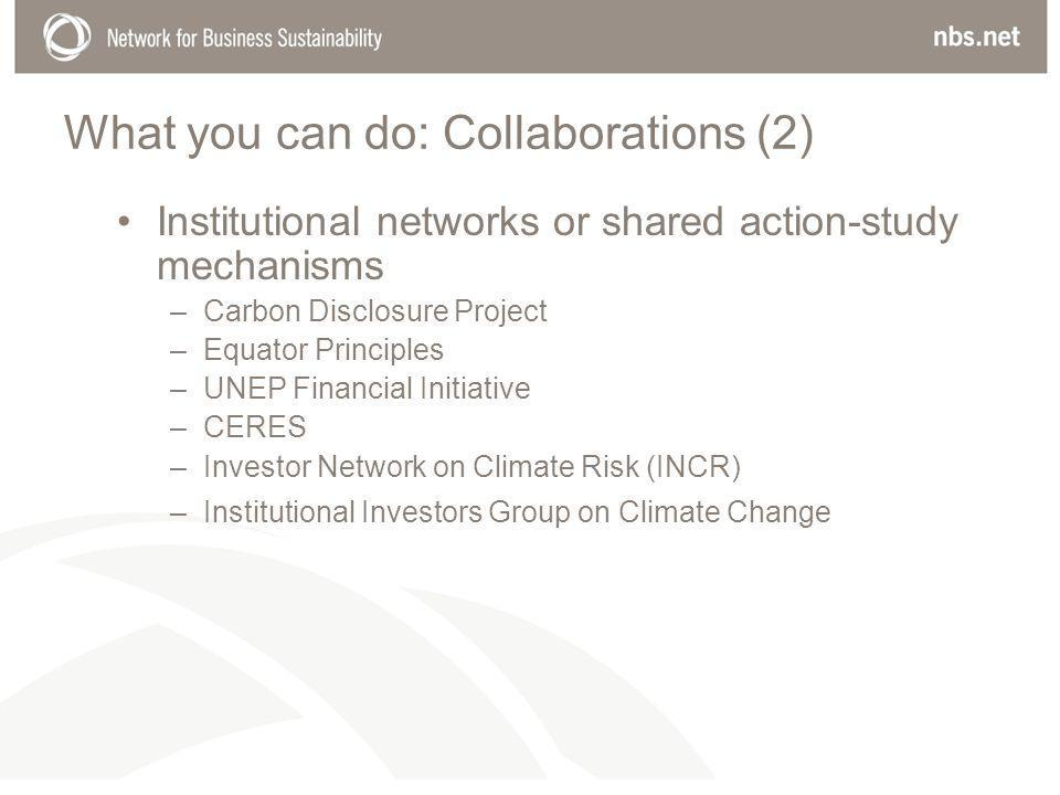What you can do: Collaborations (2) Institutional networks or shared action-study mechanisms –Carbon Disclosure Project –Equator Principles –UNEP Financial Initiative –CERES –Investor Network on Climate Risk (INCR) –Institutional Investors Group on Climate Change